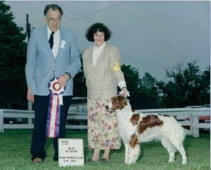 Aine - Best in Show